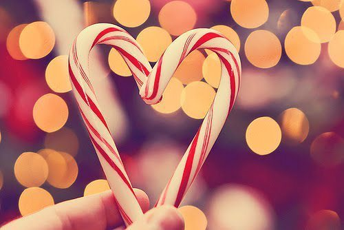 candy canes, christmas, cool and december