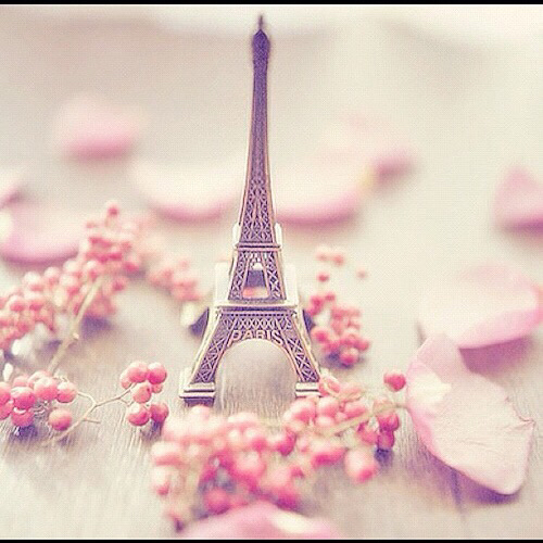 background, beautiful, eiffel tower, escape, flowers, girl, girly, journey, love, paris ...