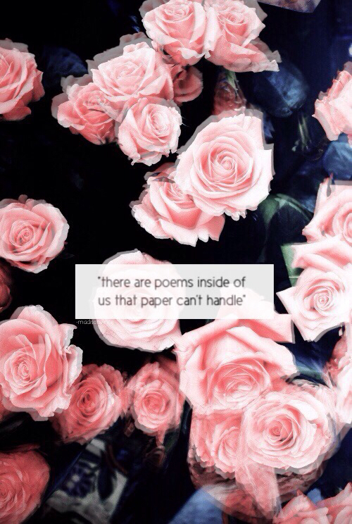 Sad Quotes On Rose: Sad love quotes pictures sayings.