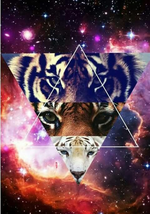 background, galaxy, hipster, sky, tigers, triangle - image ...