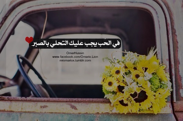 arab, arabic, love and quotes