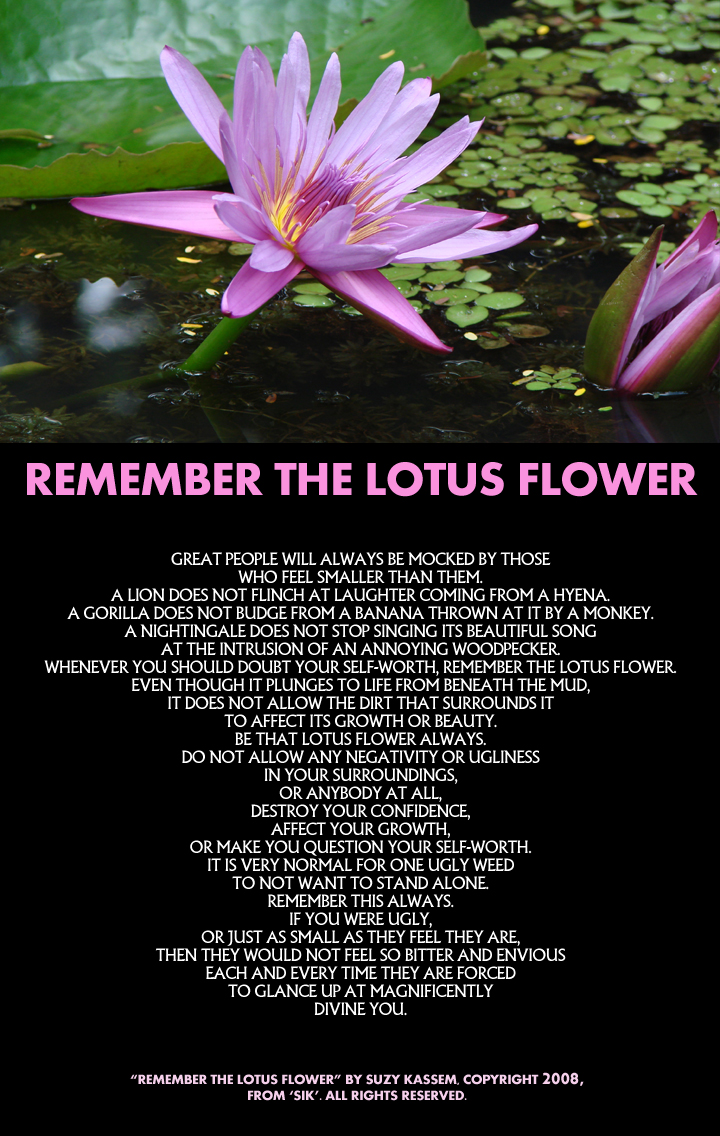 suzy kassem poetry, lotus flower, poems and suzy kassem poems