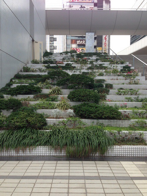 abandoned, aesthetic, green, hipster, indie, mall, moss, nature, outdoors, plants, soft grunge, stairs
