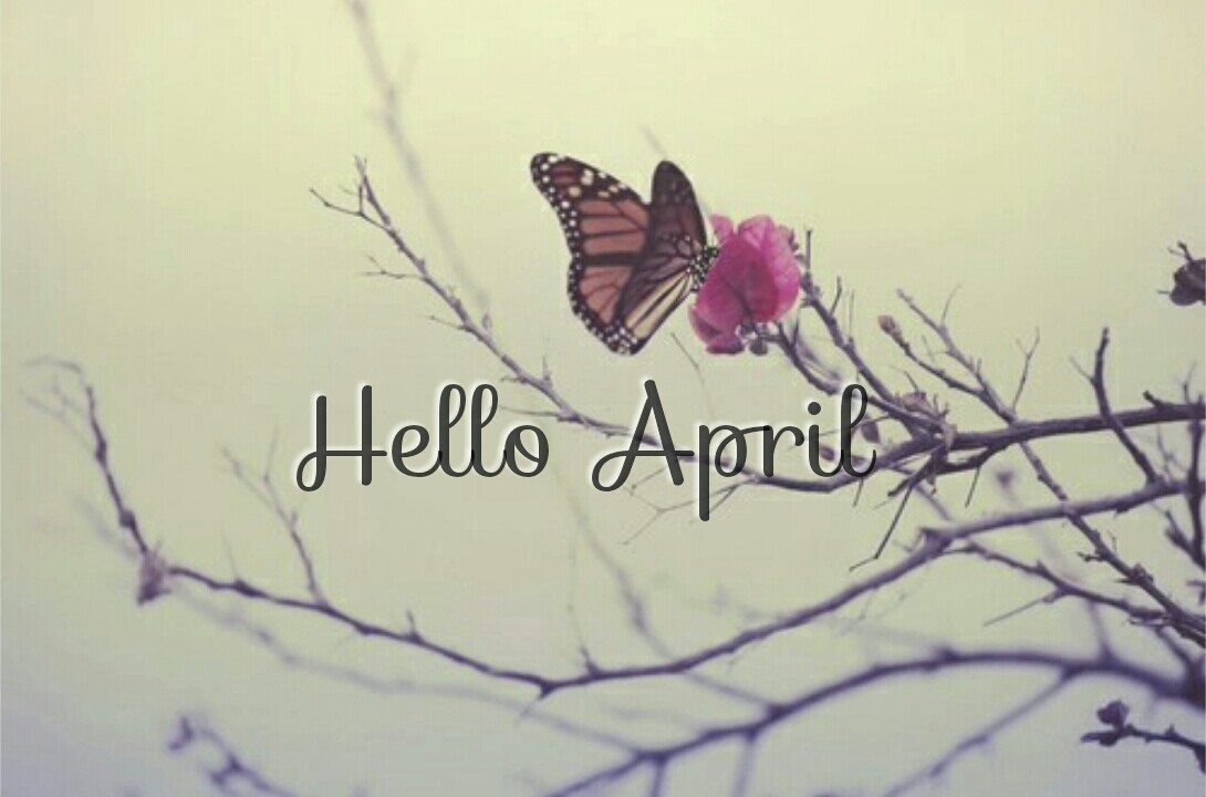 butterflie, flower, goodbye march and hello april