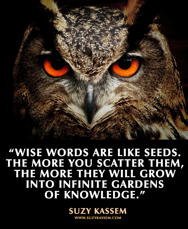 flowers, gardens, knowledge and quotes