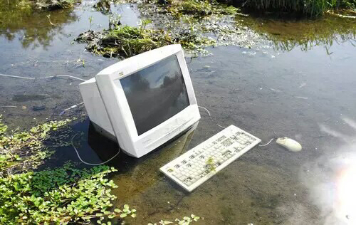 aesthetic, computer, desktop, flowers, hipster, indie, keyboard, lake, mouse, nature, plants, pond, soft grunge, 90's