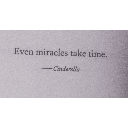 cinderella, love and miracles