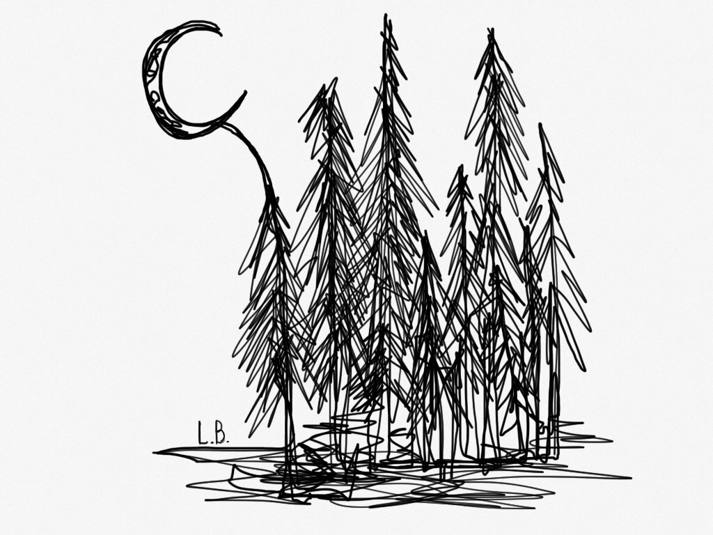 digital art, doodle, draw, drawing, forest, line art, moon, night, paint, painting, sketch, trees, First Set on Favim.com