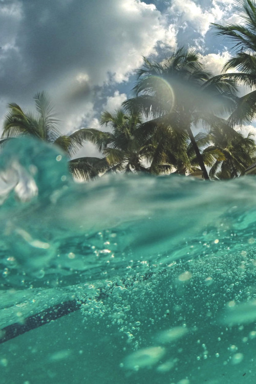 awesome picture, beautiful, breath taking, clouds, dream, landscape, love, nature, palm trees, paradise, photography, sea, sky, summer, travel, travelling, under water, view, water