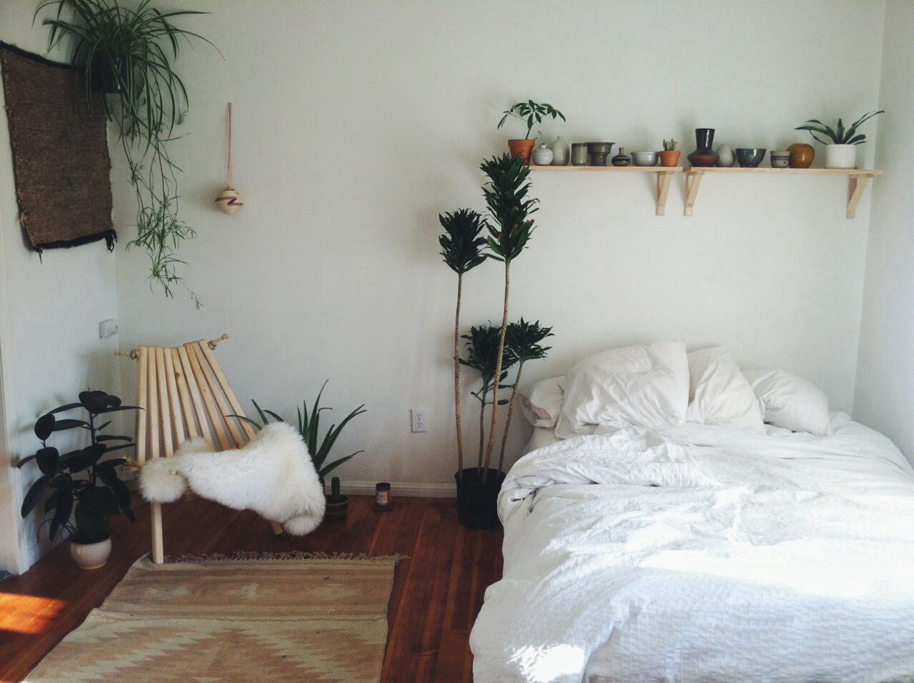 White And Succulents Room