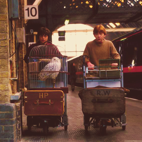 childhood, memories, owl, train station, ️harry potter