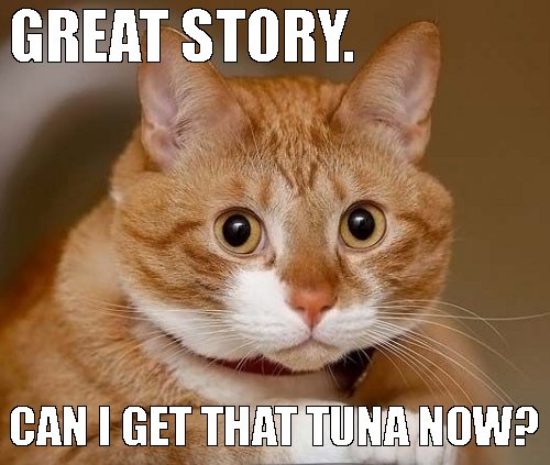 Cat Eating Tuna Sandwich