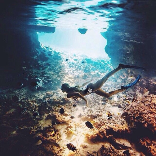 beautiful, dive, pretty girl, sea, swim, travel, trip, vacation
