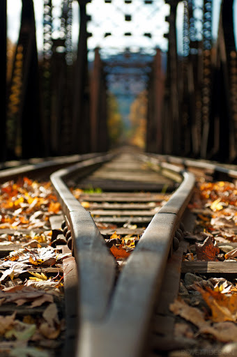 autumn, perspective, photography, railway, travel, view
