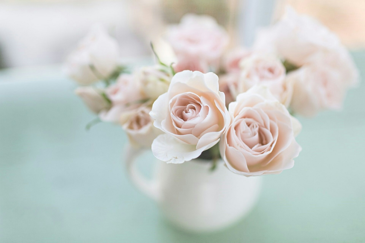 bouquet, gift, pale pink, present, roses, table, vase, white