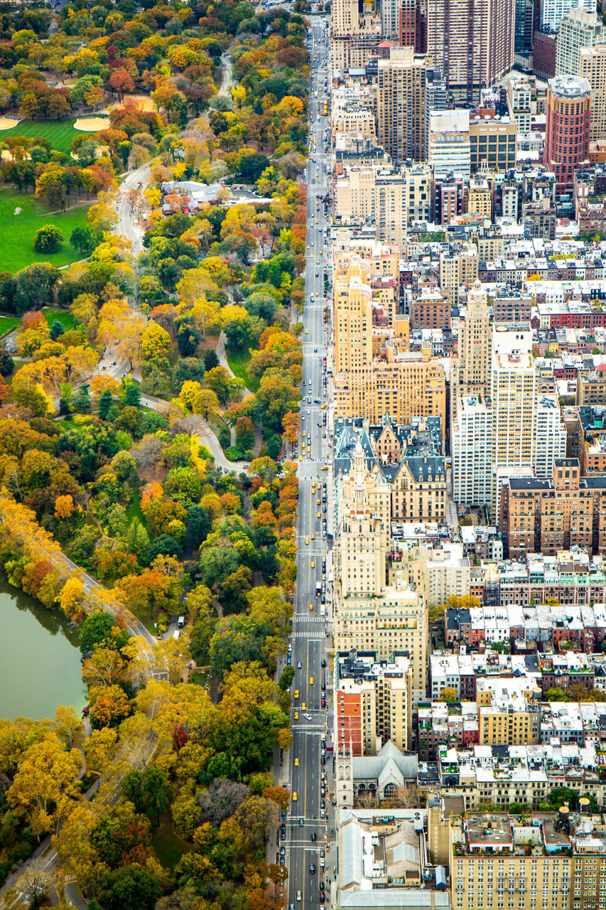 america, architecture, autumn and beauty
