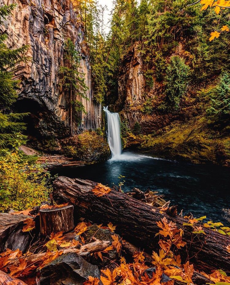 autumn, fall, forest, pond, stream, trees, water, waterfall