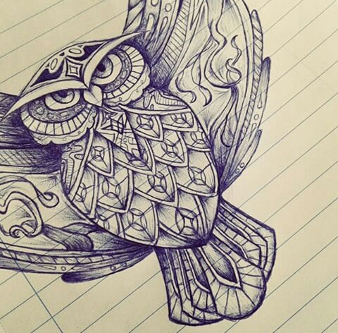 draw, drawing, owl, pen, sketch, First Set on Favim.com