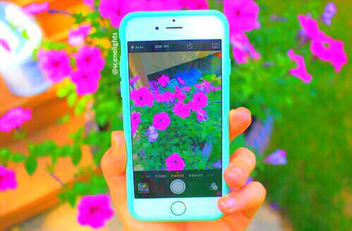 Cute Summer Iphone Wallpapers: Amazing, Apple, Background, Beautiful, Beauty