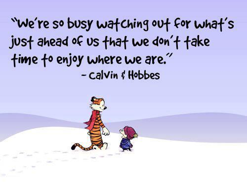 calvin and hobbes quotes snow quotesgram