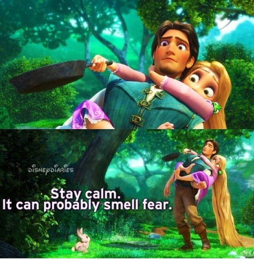 tangled disney movie quotes quotesgram