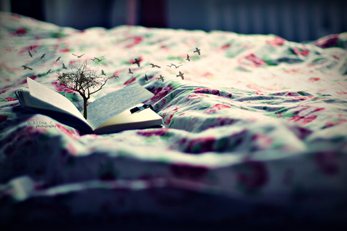 bed, birds, book, cute, drawing, dream, floral, fly, illusion, kawaii, magic, magical, nature, notebook, photography, tree
