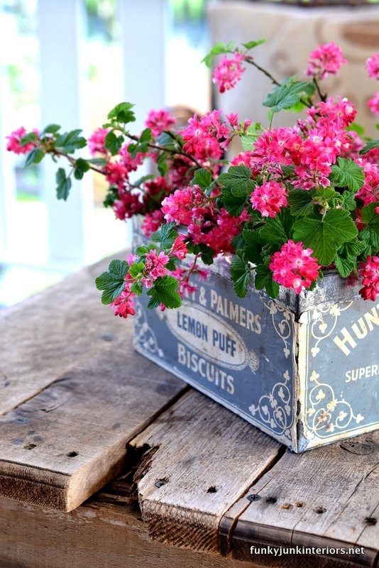 flowers, pink, rustic and shabby chic