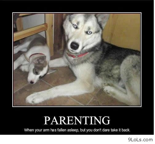 Funny dog quotes for kids - photo#27