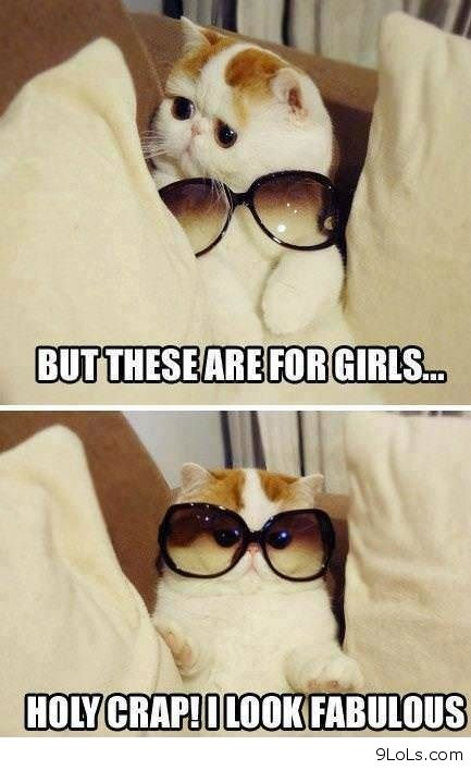 funny animals humor, funny images, funny kids, funny may 2013, funny ...