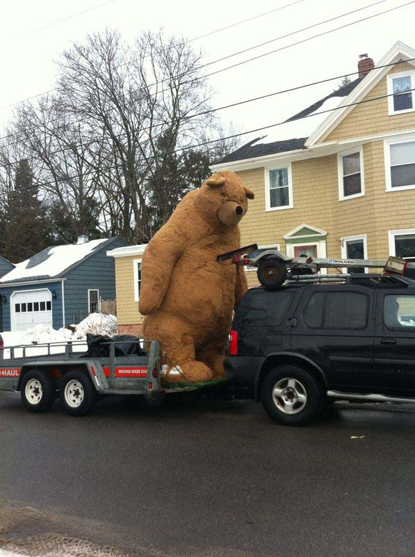 How Much Do Giant Teddy Bears Cost