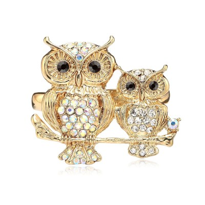http://www.okajewelry.com/products/gold-rhinestone-owl-two-finger-ring-stretchy-p-2141.html