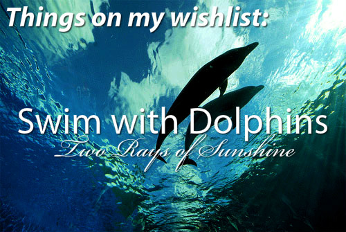 Quotes About The Dolphins Sea. QuotesGram